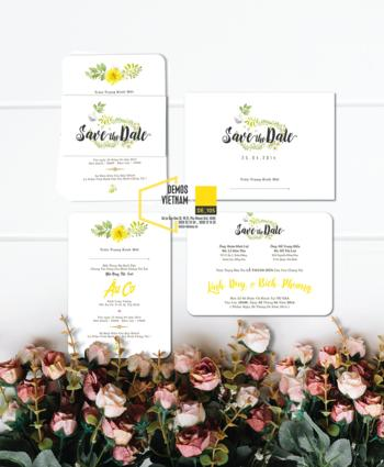 Thiệp cưới độc đáo mẫuDE105