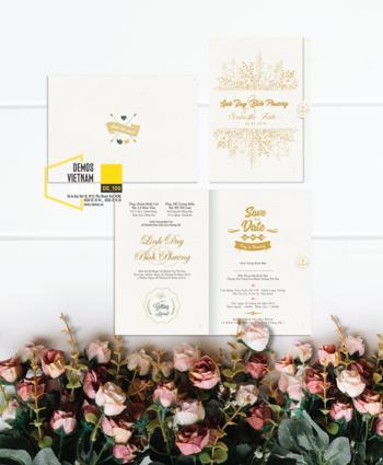 Thiệp cưới độc đáo mẫuDE100