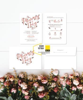 Thiệp cưới độc đáo mẫuDE117